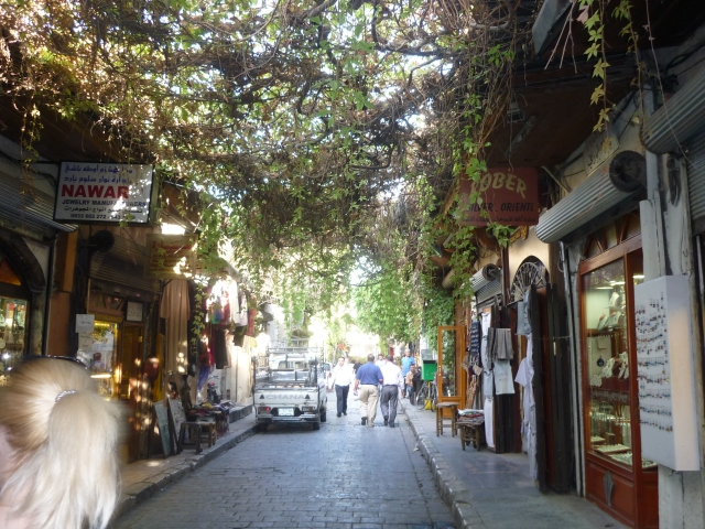 A street covered with vines to shade strollers from the sun